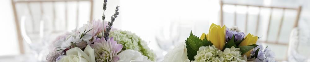 Wedding Reception Venue Wellington Docksideweddings